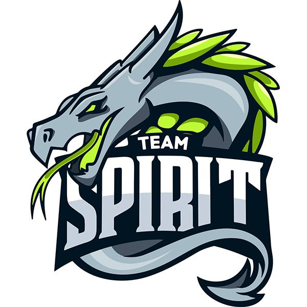 pro100 vs Spirit